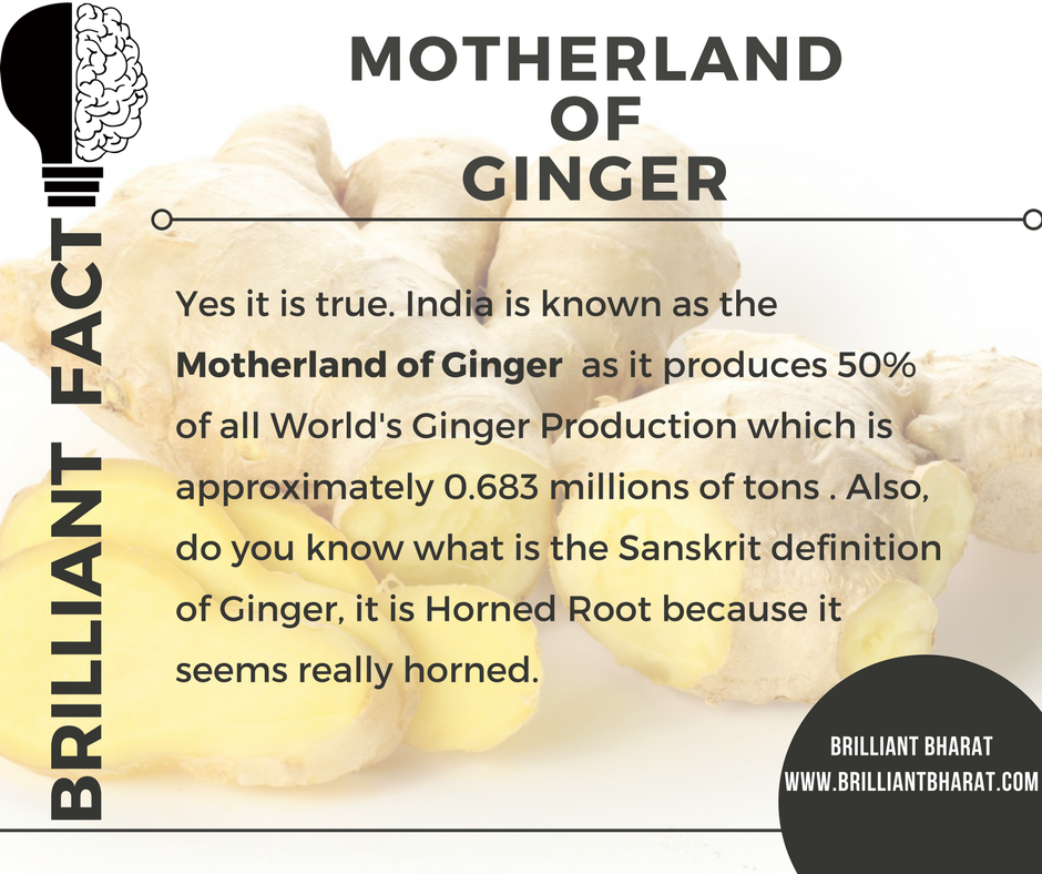Motherland of Ginger
