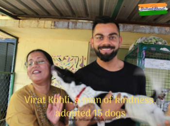 Virat Kohli, a man of kindness, passively adopts 15 rescued dogs
