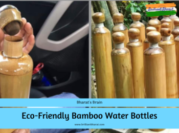 Eco-Friendly Bamboo Water Bottles